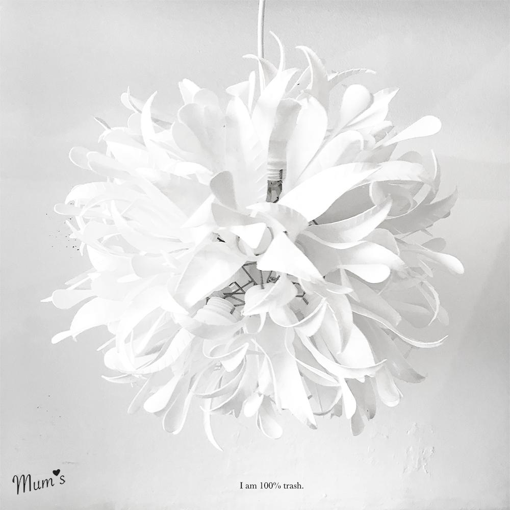 Lilyball